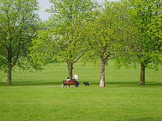 Sunny Hill Park - Sunny Hill Park on a sunny spring afternoon