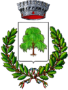 Coat of arms of Salassa