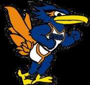 Rowdy, UTSA's mascot