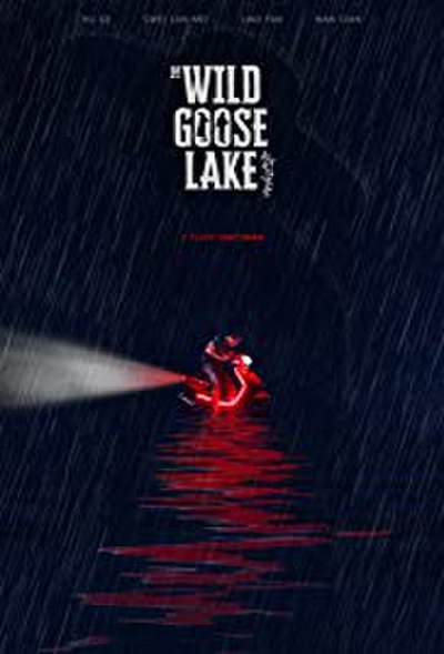 Picture of a movie: The Wild Goose Lake