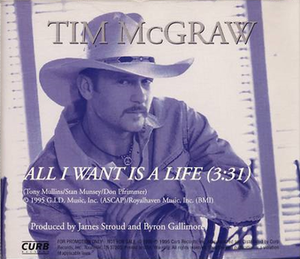 All I Want Is a Life - Image: Tim Mc Graw A Life cd single