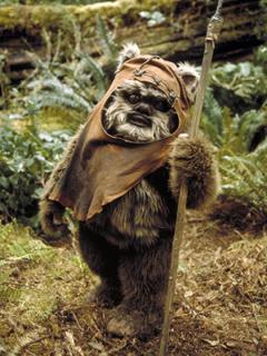 Wicket W. Warrick Star Wars character