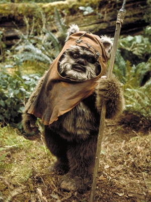 Wicket W. Warrick - Wicket the Ewok in Return of the Jedi