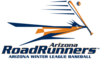 Arizona RoadRunners Main Logo.png