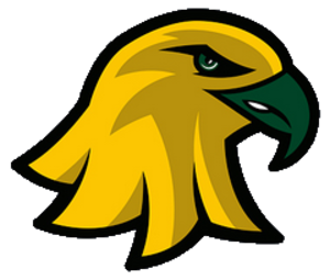 Brockport Golden Eagles - Image: Brockp Gold Eagles logo