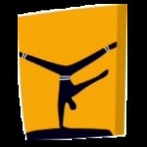 Gymnastics at the 2004 Summer Olympics - Image: Gymnastics (Artistic), Athens 2004