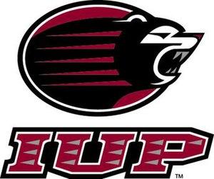 IUP Crimson Hawks - IUP bear logo