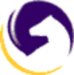 Mind Sports Organisation - MSO logo