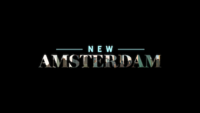 Picture of a TV show: New Amsterdam