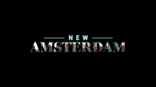 <i>New Amsterdam</i> (2018 TV series) American medical drama television series