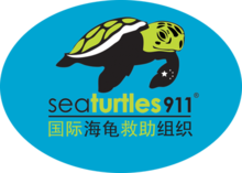 Sea Turtles 911 Logo.png