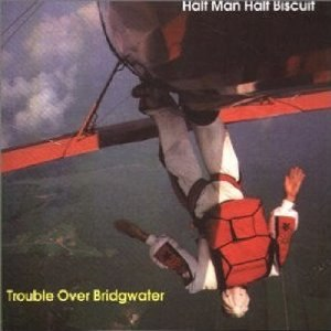 Trouble over Bridgwater - Image: Trouble Over Bridgwater cover