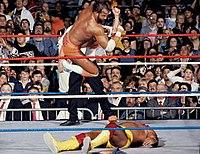 Randy Savage vs. Hulk Hogan for the WWF Championship