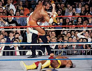 WrestleMania V - Randy Savage versus Hulk Hogan for the WWF World Heavyweight Championship