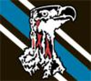 Botswana national rugby union team - Image: Botswana rugby logo