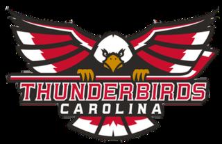 Carolina Thunderbirds (FHL) minor league professional hockey team located in Winston-Salem, North Carolina, playing in the Federal Hockey League
