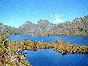 Non-photorealistic rendering - Image: Cradle Mountain Behind Dove Lake painted
