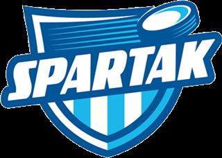 HK Dubnica Slovak ice hockey team