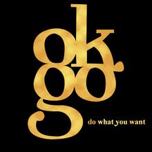 Damian Kulash Do What You Want (EP) ...