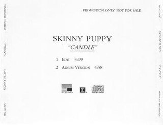 Candle (Skinny Puppy song) Song by Skinny Puppy