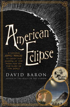 American Eclipse (book) - Image: American Eclipse By David Baron