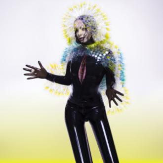 Vulnicura - Image: Björk Vulnicura (Official Album Cover)