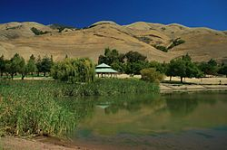Ed R. Levin County Park is nestled in the foothills of Milpitas. (Click on the image for a detailed description)