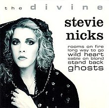 The Divine Stevie Nicks.jpg