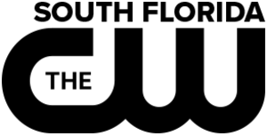 WSFL-TV - Image: WSFL 2017 Logo