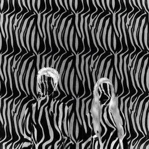 Zebra (Beach House song)