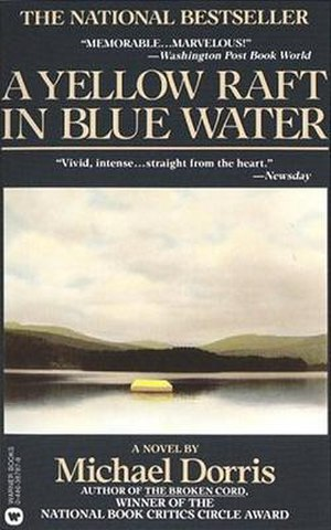 A Yellow Raft in Blue Water - 1st US paperback edition