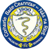Official seal of Naas