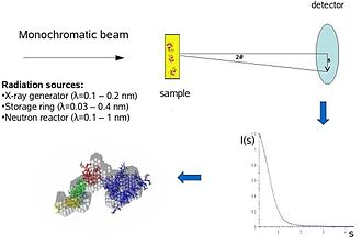 Biological small-angle scattering - Image: Saxs scheme 1