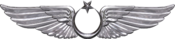 TuAF Aviation Badge.png