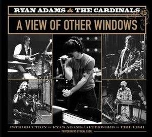 Ryan Adams & the Cardinals: A View of Other Windows - Image: Aviewofotherwindows