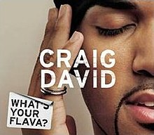 Craig David — What's Your Flava? (studio acapella)