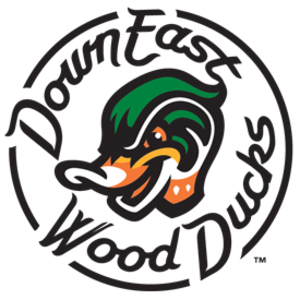 Down East Wood Ducks - Image: Down East Wood Ducks