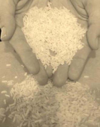 Food policy - Rice