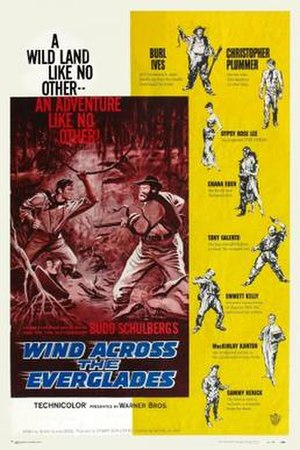 Wind Across the Everglades - Image: Wind Across the Everglades Film Poster