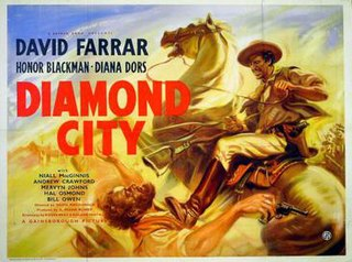 <i>Diamond City</i> (film)
