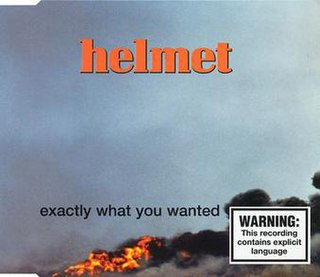 Exactly What You Wanted 1997 song performed by Helmet