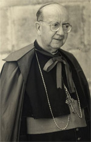 Luis Almarcha Hernández -  Luis Almarcha Hernández