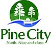 Official logo of Pine City