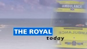 The Royal Today - The Royal Today titles