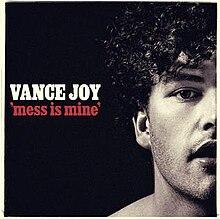 Vance Joy Mess Is Mine.jpg