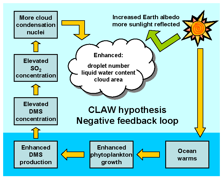 CLAW hypothesis graphic 1 AYool