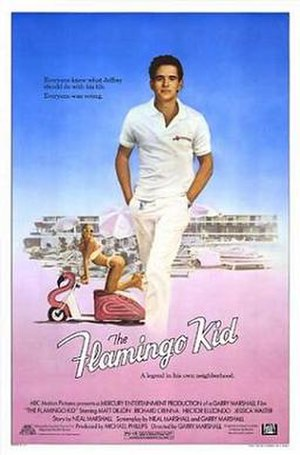 The Flamingo Kid - Theatrical release poster