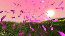 A group of pink flower petals are displayed above a green grassy field with the viewer seemingly amongst them. The sky is pink-toned, and a light yellow sun is shown above the horizon on the right side.