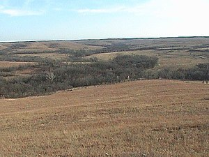 Konza Prairie Biological Station - Image: Konza winter