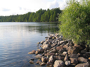 Pettigrew State Park - A view of Lake Phelps at Pettigrew State Park